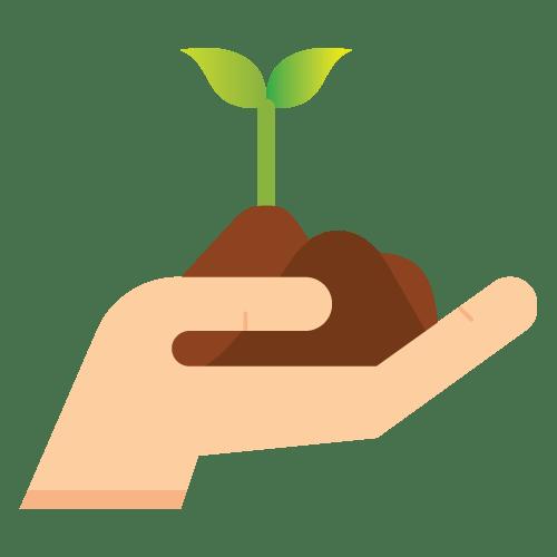 3 best landscaping tips