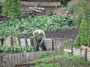 Spring Soil Maintenance